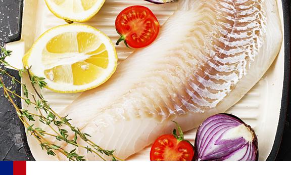 Bacalhau e seus benefícios