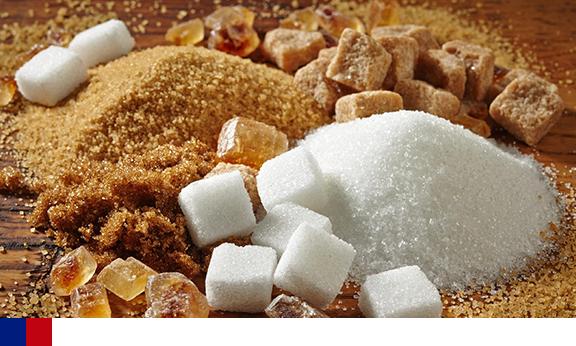 Dependência alimentar e ganho de peso com relação ao consumo de açúcar