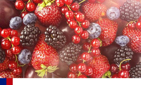 Flavonoides dietéticos e a prevalência e incidência de 15 anos de degeneração macular relacionada à idade