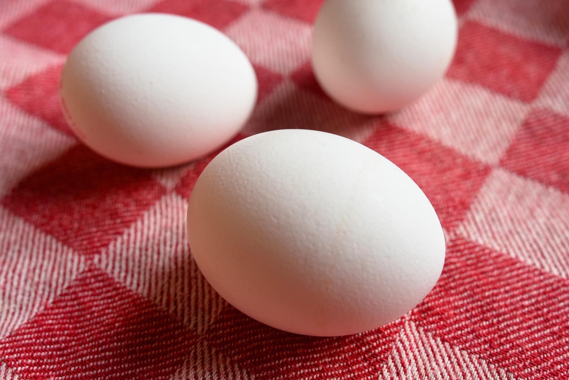 Estudo do JAMA sobre o ovo gera polêmica em torno do alimento. Médica nutróloga da ABRAN fala do assunto.