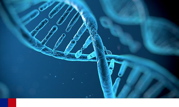 Dois terços das mutações causadoras de câncer ocorrem devido a erros aleatórios de reprodução do dna, diz estudo