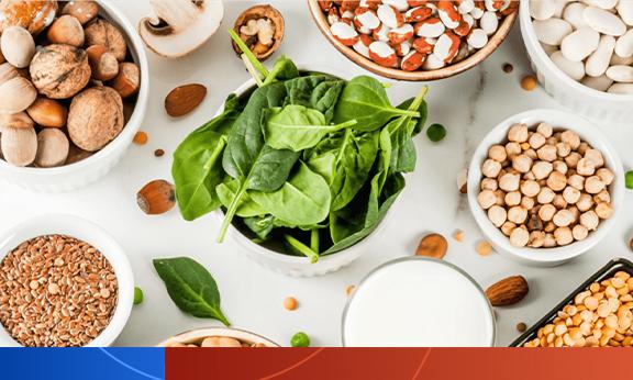 Proteínas vegetais e animais na saúde óssea